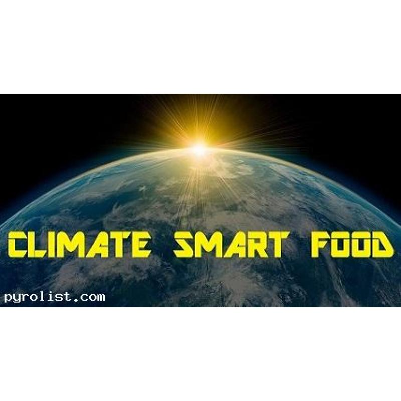 Consulting, Training & Education in the Climate Smart Sector